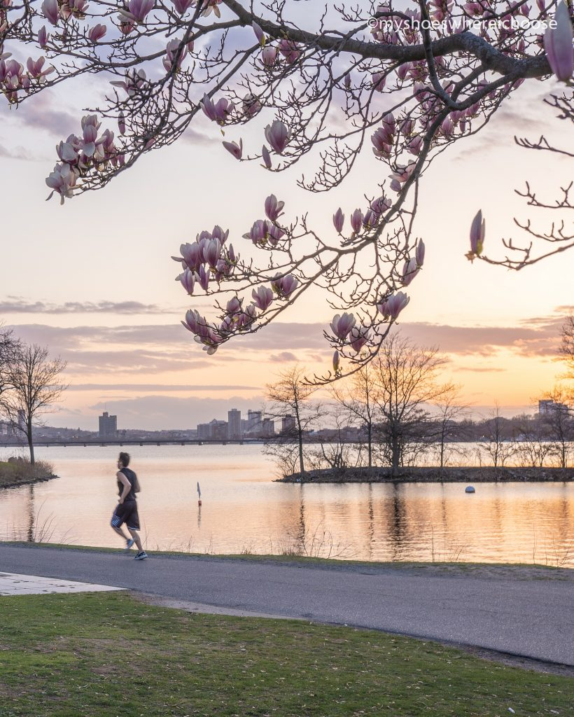 man running at charles river esplanade during sunset